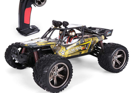 RC Monstertruck offroad
